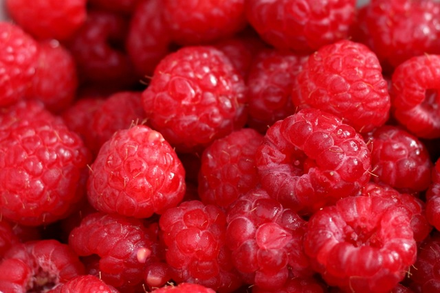 Why Not Grow Your Own Raspberries at Home?